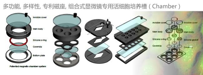 磁座zu合蔶iao顇i胞培yang槽